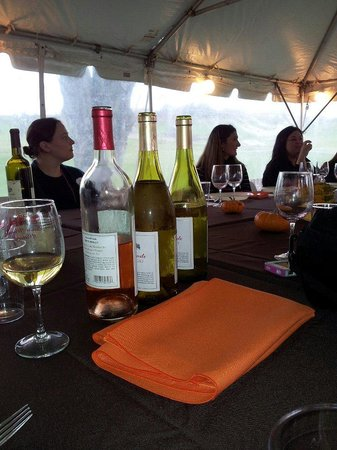 Chadds Ford, PA: My initial vist the Bachelorette Wine tasting was held in the tent!