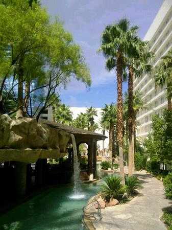 Hard Rock Hotel and Casino: Pool area