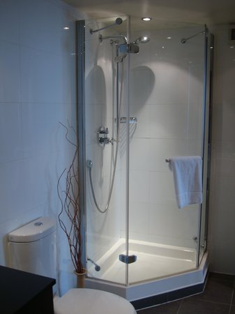 The Westbury Hotel : Shower
