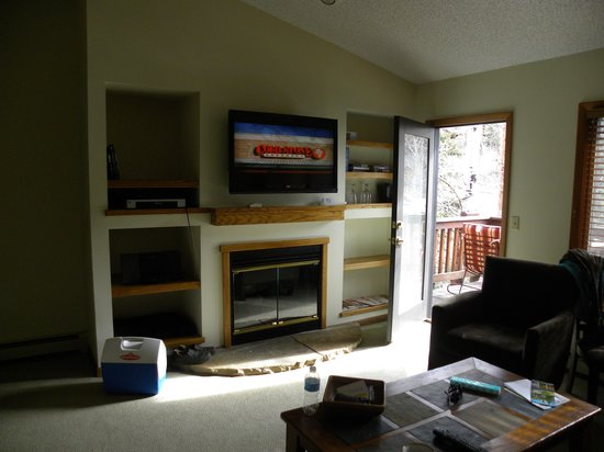 Boulder Brook on Fall River: tv area of living room