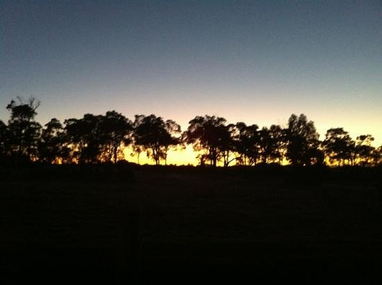 Willyabrup, Australia: Sunrise during vintage 2013