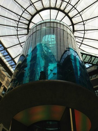 Radisson Blu Hotel, Berlin: View from lobby
