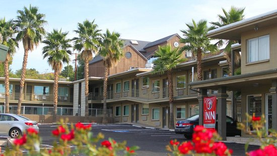 The INN at St.George: A view from St. George Boulevard at the Palm Trees and building one rooms