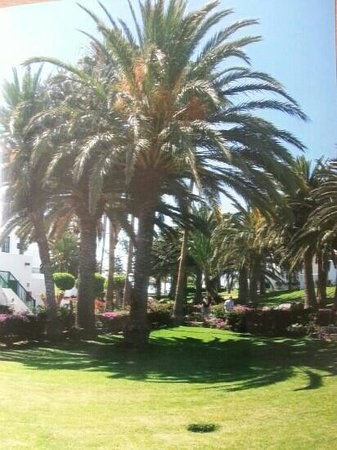 ClubHotel Riu Paraiso Lanzarote: lovely grounds