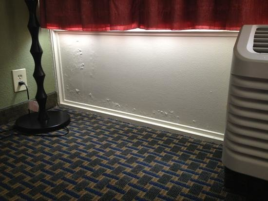 Comfort Inn South Oceanfront: walls deteriorating