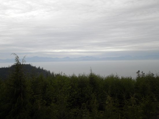 Port Renfrew, Canada: View from our yurt