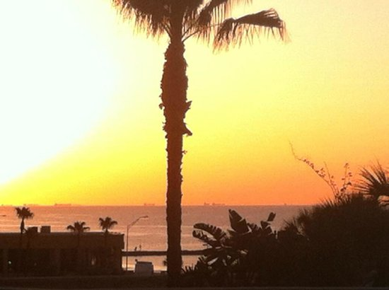 The San Luis Resort: Amazing sunset!