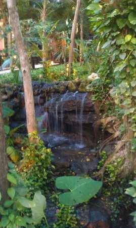 Reef Playacar: De tuin met waterval.