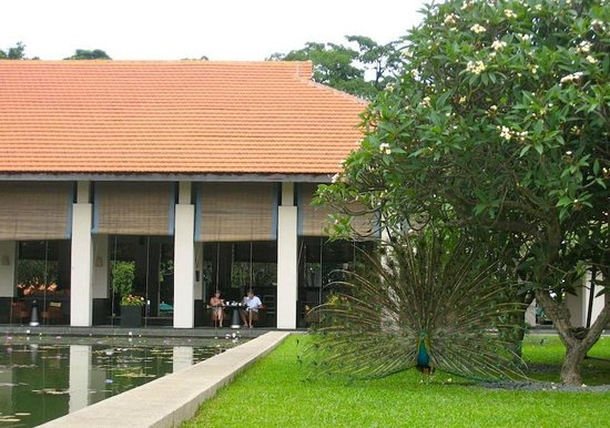 The Sentosa, A Beaufort Hotel: View of the grounds and The Pavilion