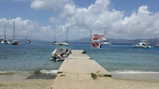 Road Town, Tortola: Sail Caribbean Divers. The dock at Cooper island.