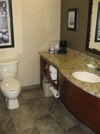 Holiday Inn Express Holland: bathroom of room 316