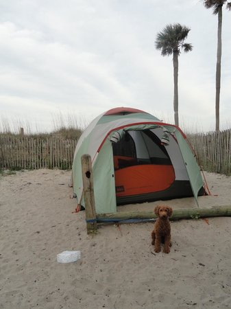 Hunting Island State Park Campground: Tent site near the beach