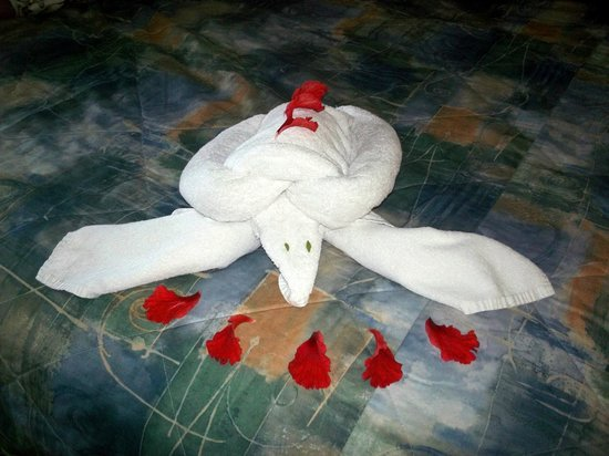 Grand Palladium Riviera Resort & Spa: Towel Art