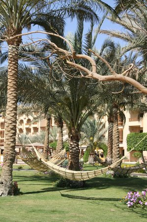Movenpick Resort Hurghada: гамаки
