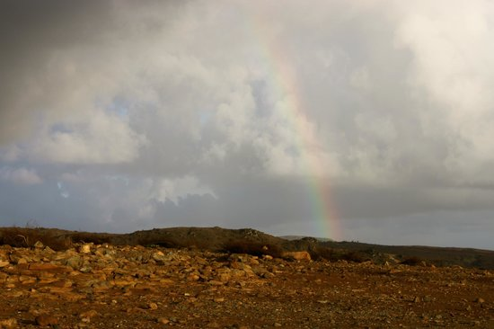 Savaneta, Aruba: We were lucky enough to see a rainbow as the morning rain stopped!