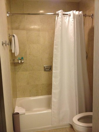 Hyatt Chicago Magnificent Mile: Bath/Shower