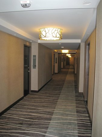 Grand Hyatt Denver Downtown: Typical hallway