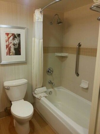 Hilton Garden Inn Los Angeles/Hollywood: Spacious and clean bathroom