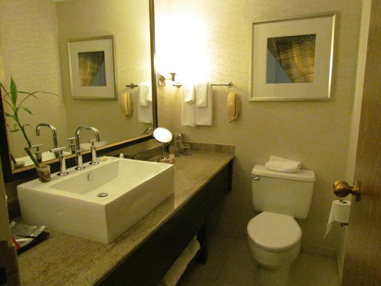 Hyatt Regency St. Louis at The Arch: nice bathrooms