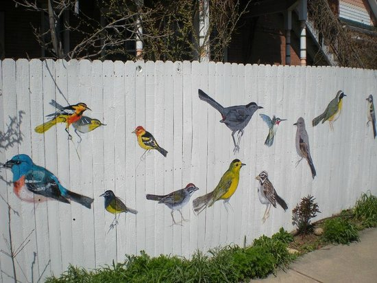 Boulder, Колорадо: Wonderful, decorated fence