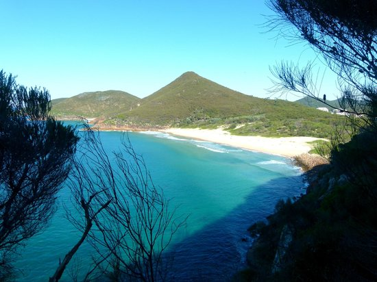 how to get to tomaree head summit walk