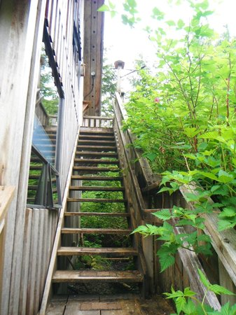 Sauna House B&B: stairs to the loft
