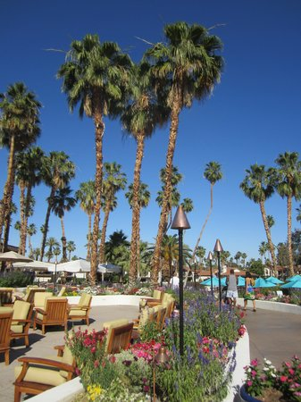 Rancho Las Palmas Resort & Spa: Courtyard