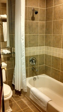 Library Hotel: bathroom