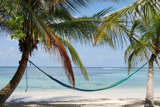 South Water Caye, Belize: compulsory hammock
