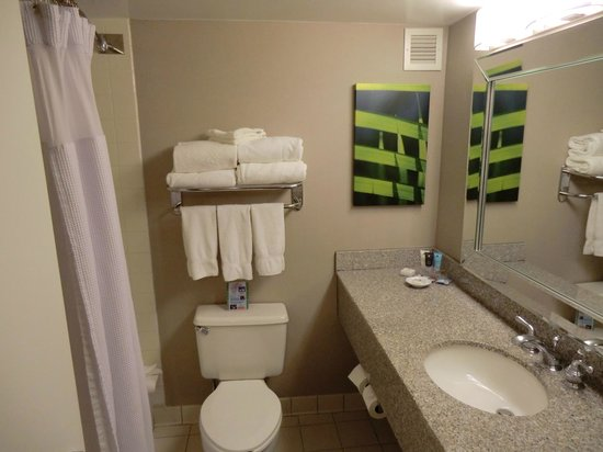 Crowne Plaza Miami Airport: Bathroom