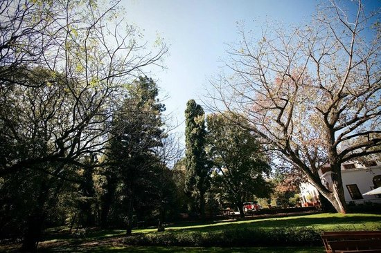 Centurion, South Africa: Snap shot of Kleinkaap's garden in winter