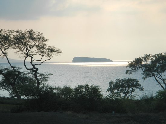 Makena Beach & Golf Resort: Molokini