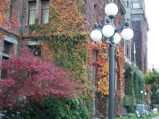The Fairmont Empress: O Empress com suas flores...