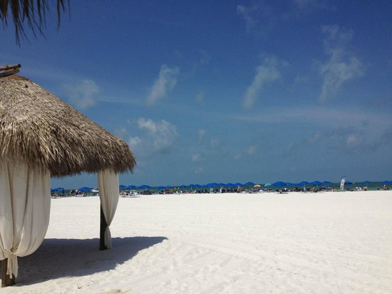 Marco Island Marriott Resort, Golf Club & Spa: view from Tiki Hut