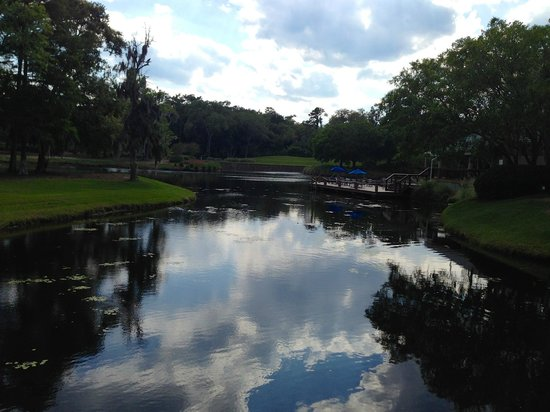 Sawgrass Marriott Golf Resort & Spa: Taken from the bridge that connects the villas to the hotel