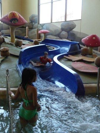 Great Wolf Lodge: Great toddler slide