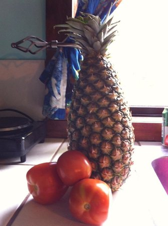 West Bay Lodge: Bought from truck - Pineapple and 1 lb of tomatoes for $2.50