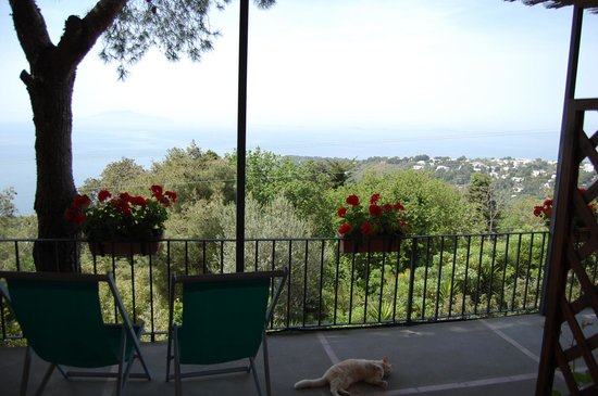 Alle Ginestre Capri Bed & Breakfast: great view