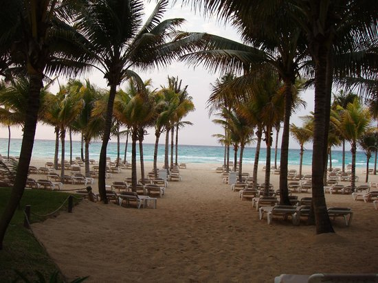 Riu Palace Mexico: Beach view.