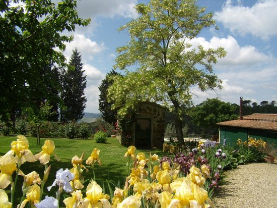 Scandicci, Italy: The garden in May