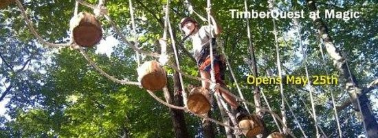 Londonderry, Вермонт: Fun in the Trees