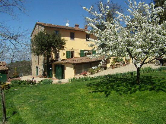 Scandicci, Italy: The farmhouse in May