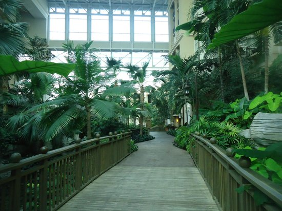 Gaylord Palms Resort &amp; Convention Center: Inside Hotel