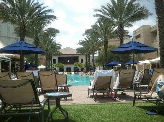 Gaylord Palms Resort &amp; Convention Center: Pool