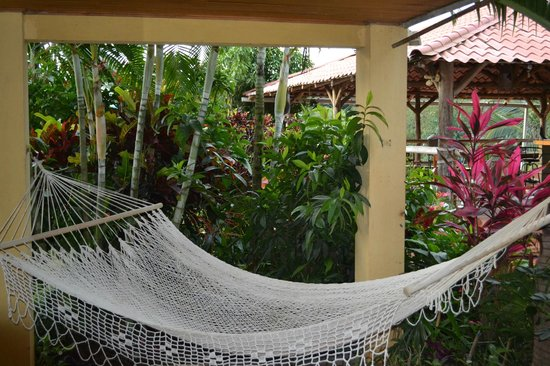 Atenas, Kosta Rika: Hammock near pool