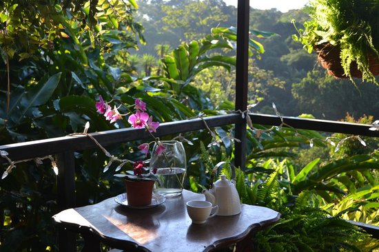 Atenas, Costa Rica: Tea on patio