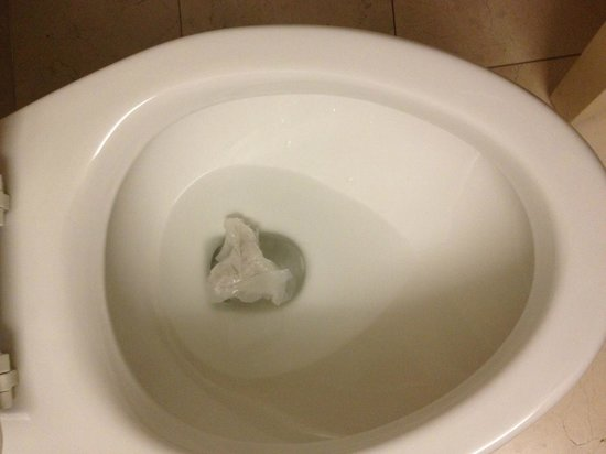 Embassy Suites West Palm Beach - Central: Housekeeping's attention to detail. Toilet paper from a previous guest?