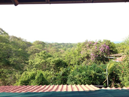 Nosara, Costa Rica: View from our suite