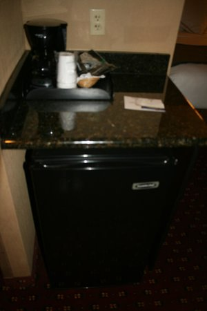 BEST WESTERN Plus Canyonlands Inn: Large fridge &amp; tea/coffee facilities