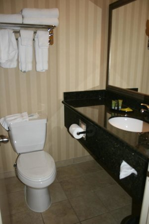BEST WESTERN Plus Canyonlands Inn: Toilet &amp; bathroom sink area